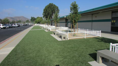 Sinaloa Middle School Beautification
